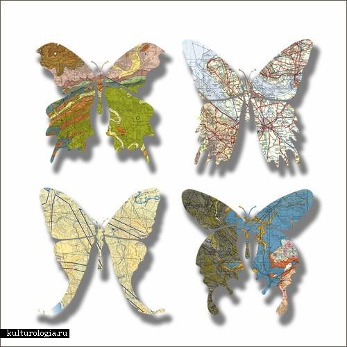 Бабочки Джозефа Уоррена (Joseph Warren)