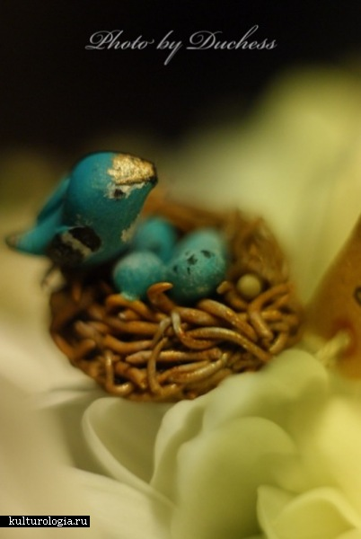 кольцо синяя птица