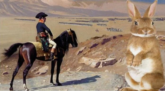Наполеон и битва с кроликами.
