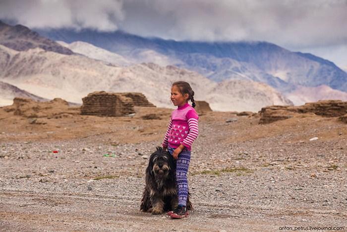 Девочка и собака.