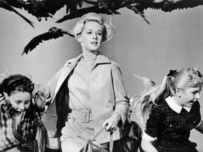 Кадр из фильма Птицы.