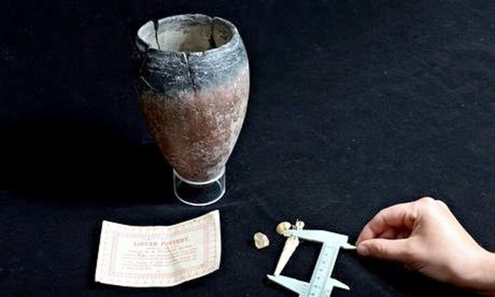 Ливийская керамика, 3000 г. до н.э.