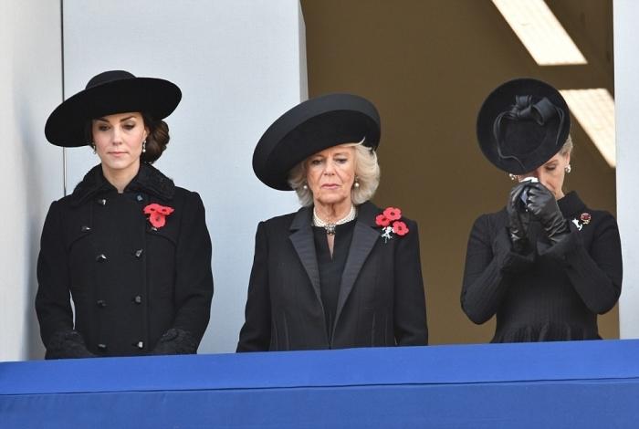 Члены королевской семьи на траурной церемонии по случаю ежегодного Дня Памяти в честь павших британских солдат всех времен.