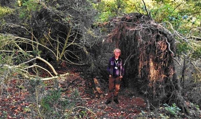 Эко-дом времён мезолита.