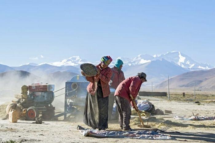 Тибетцы - потомки денисовских людей.