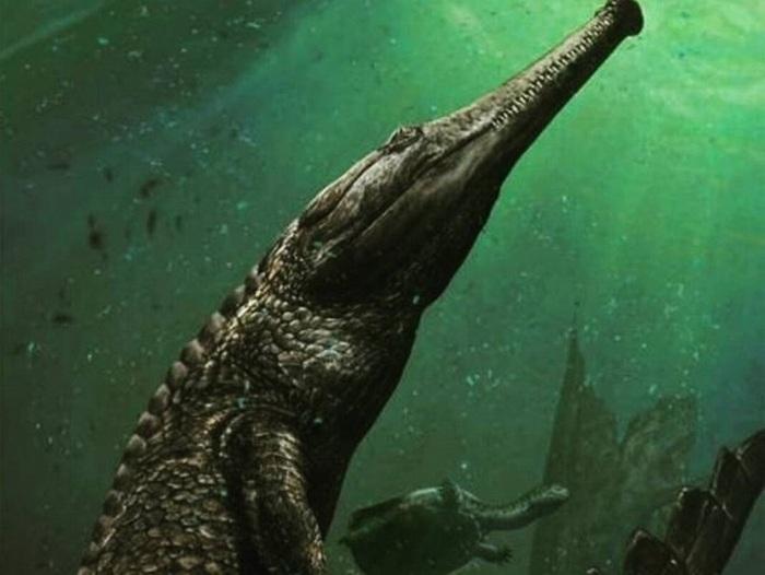 Махимозавр Рекс.