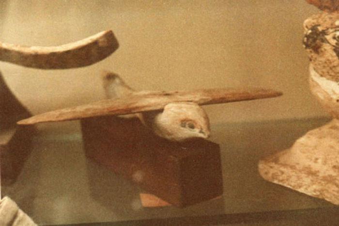 Птица из Саккары