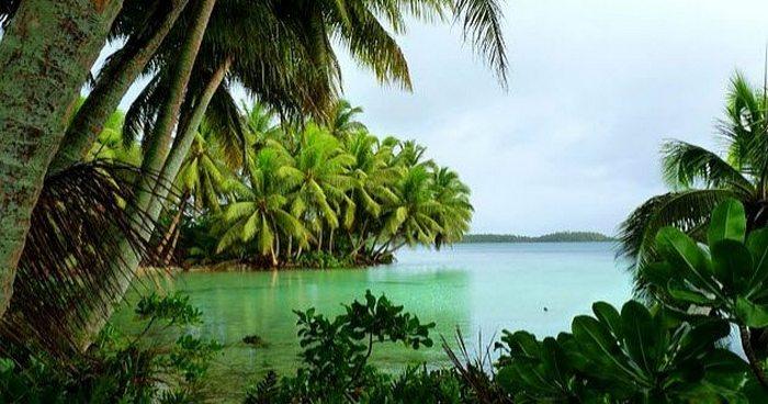 Сокровище Эсперансы посреди Тихого океана.