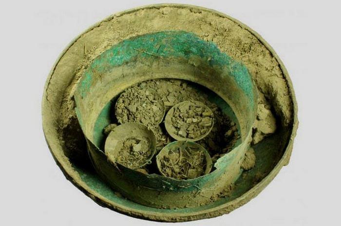 Древняя пузырчатая пленка из растений.