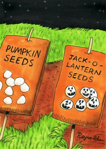 Семена хэллоуинской тыквы
