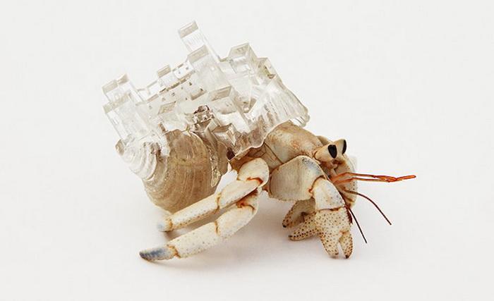 Аки Иномата создала небольшие «дома-раковины», подражая архитектуре разных стран мира