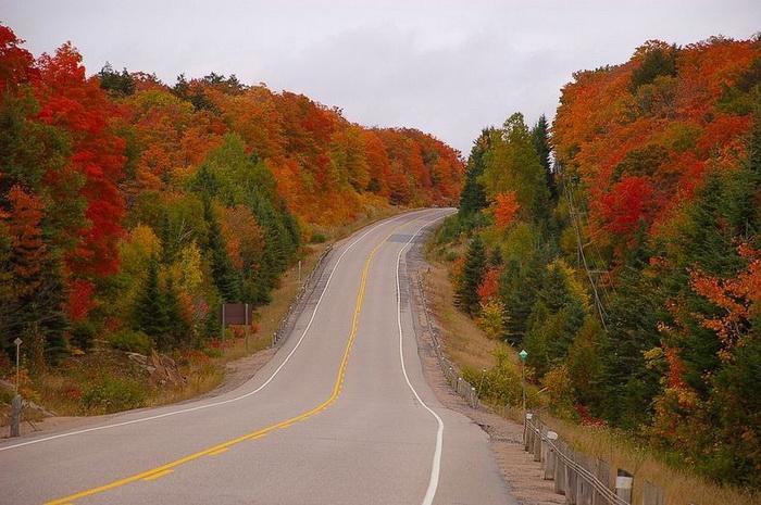 Осеннее очарование канадского парка Алгонквин