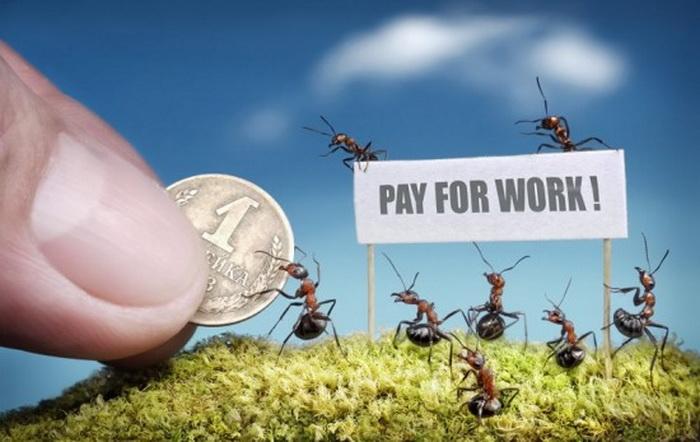 Плата за отличную работу