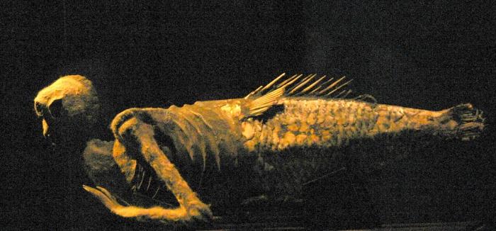 Артефакт-мистификация - русалка с острова Фиджи