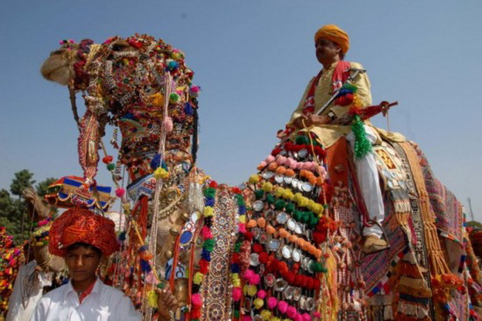 Bikaner Camel Festival: яркие аксессуары - неотъемлемый атрибут конкурса верблюжьей красоты