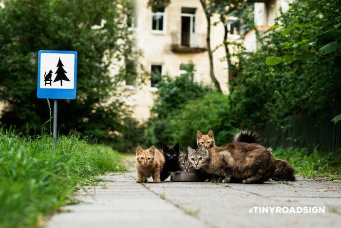 Дорожный знак, напоминающий о защите животных