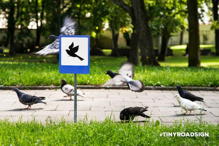 Для голубей знак установлен на тротуаре