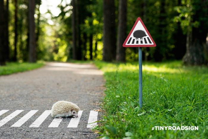 Осторожно, еж! Забавный дорожный знак от арт-студии CLINIC 212