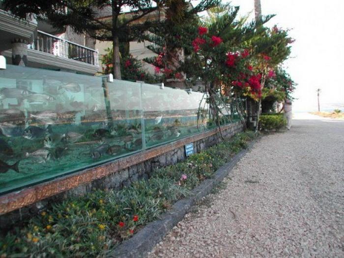 Бизнесмен Mehmet Ali Gokceoglu построил необычный аквариум 8 лет назад