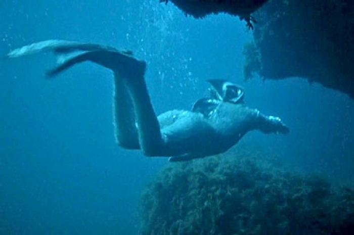 Подводные съемки