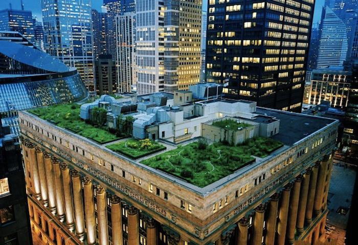 City Hall Rooftop Garden: зеленая крыша в Чикаго
