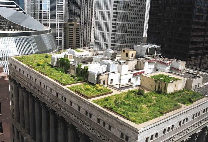 Сад на крыше 11-этажного здания (Чикаго)