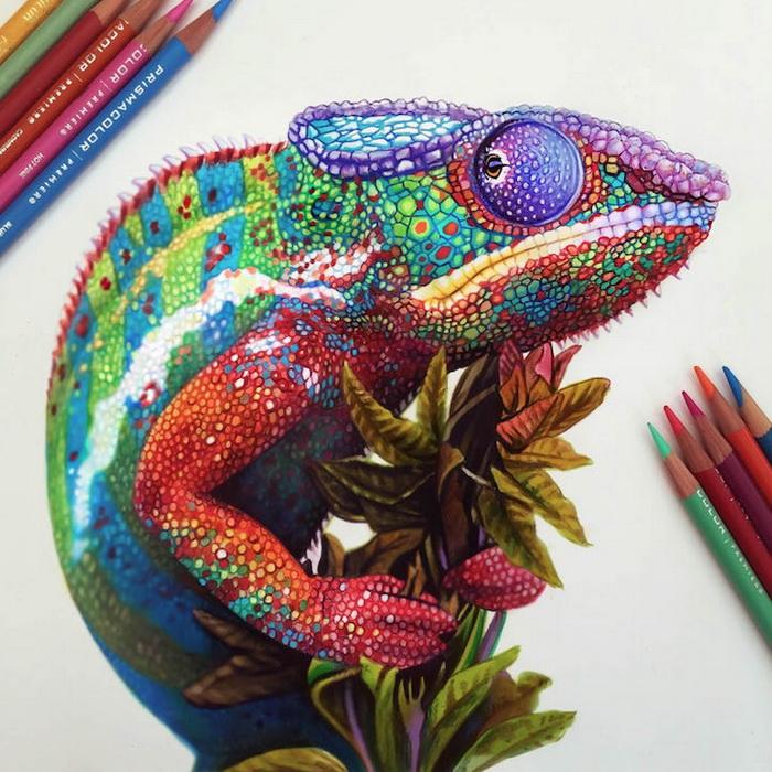Красочные рисунки Морган Дэвидсон (Morgan Davidson)