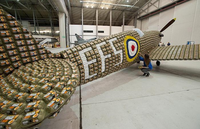 Макет самолета из упаковок для яиц