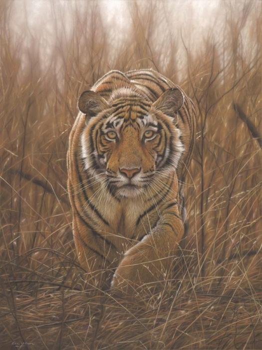 Животные на картинах Эрика Уилсона выглядят очень реалистично