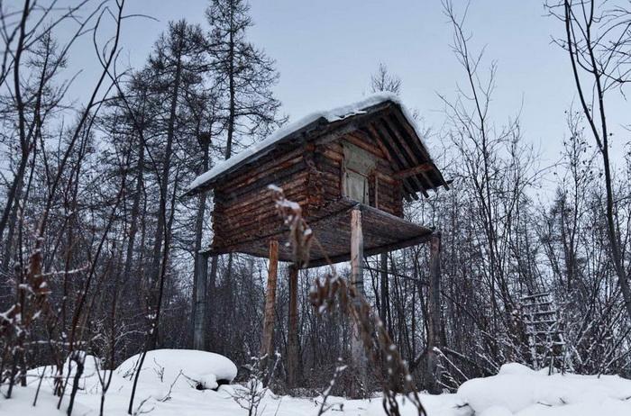 Охотничий дом на сваях для защиты от диких животных