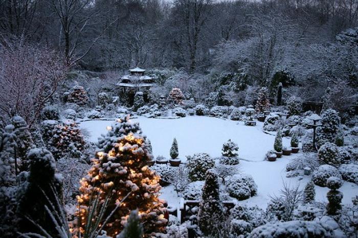 Зима в удивительном  парке Four Seasons Garden