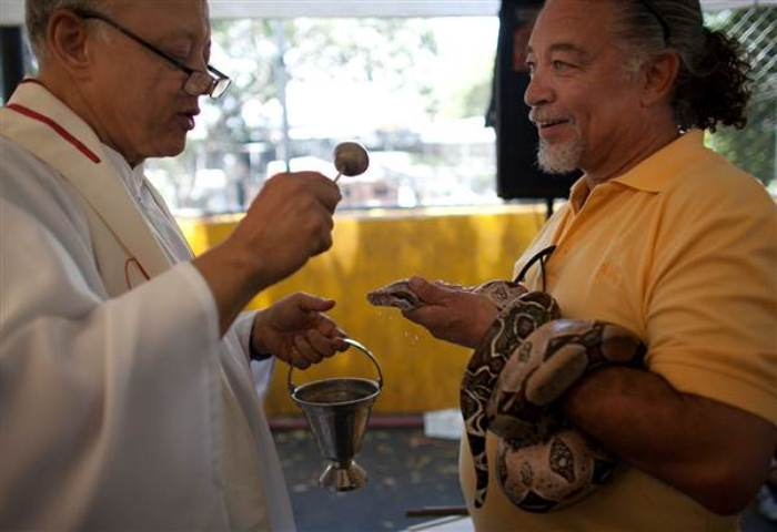 Змея получила благословение священника. Фото: rg.ru
