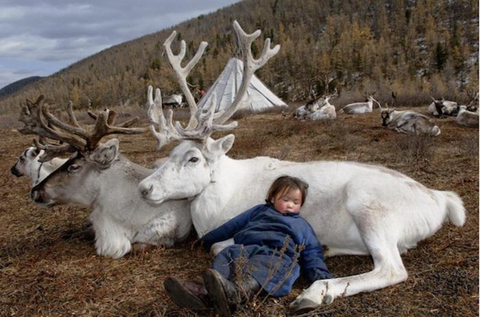 Интереснейший фотоцикл о жизни народа духа (Монголия)