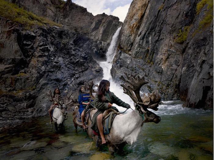 Сезонная миграция цаатанов