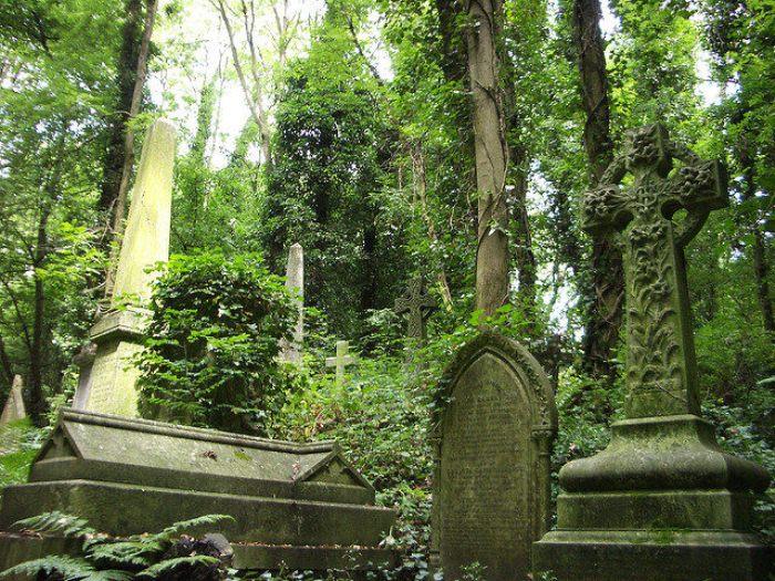 Старинные надгробия на Хайгейтском кладбище.