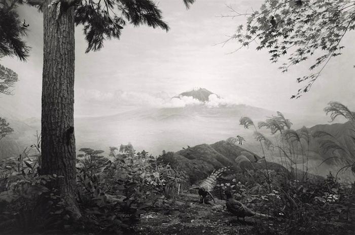 Дирамы: оригинальный фотопроект от Хироши Суджимото (Hiroshi Sugimoto)
