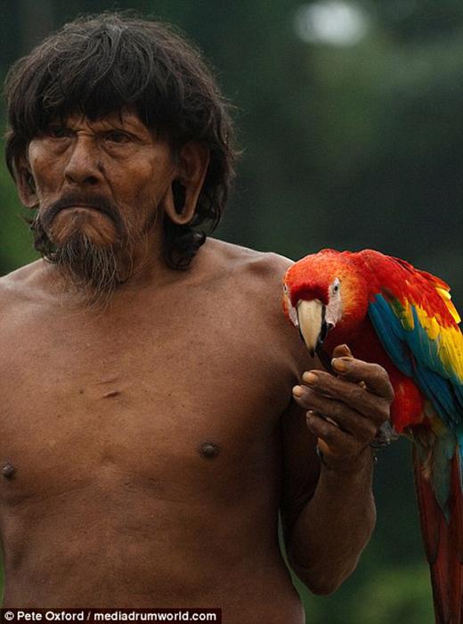 Мужчина с попугаем ара