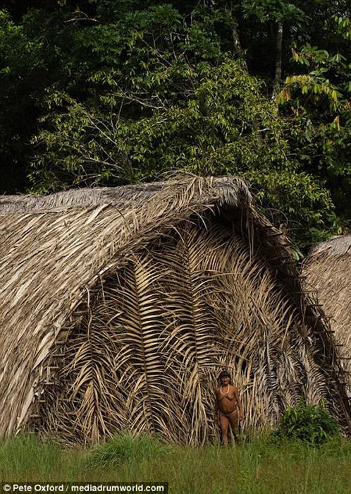 Традиционное жилище ваорани