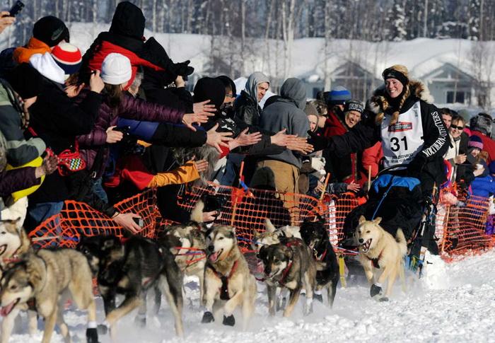 Кристи Берингтон - одна из немногих участниц гонок на собачьих упряжках *Идитарод*