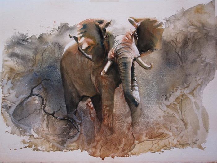 Дикие животные на картинах художницы Karen Laurence-Rowe