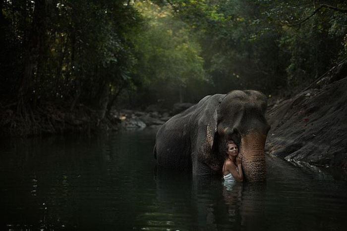 Очаровательные девушки и дикие животные на фотографиях Катерины Плотниковой