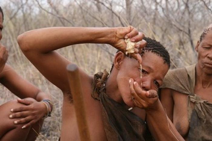 Мужчина из племени кунг добывает воду во время засухи