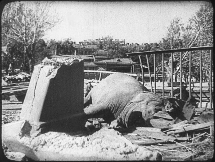 Слониха Бетти погибла во время бомбежки
