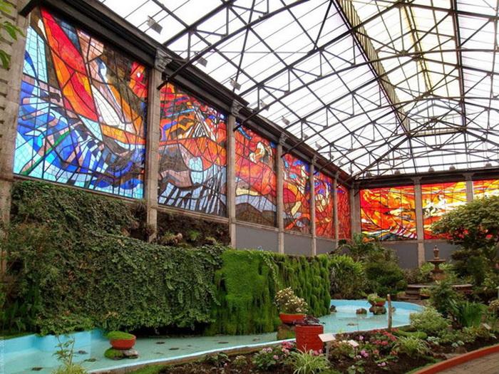 Витражи - главная достопримечательность ботанического сада в Толука-де-Лердо