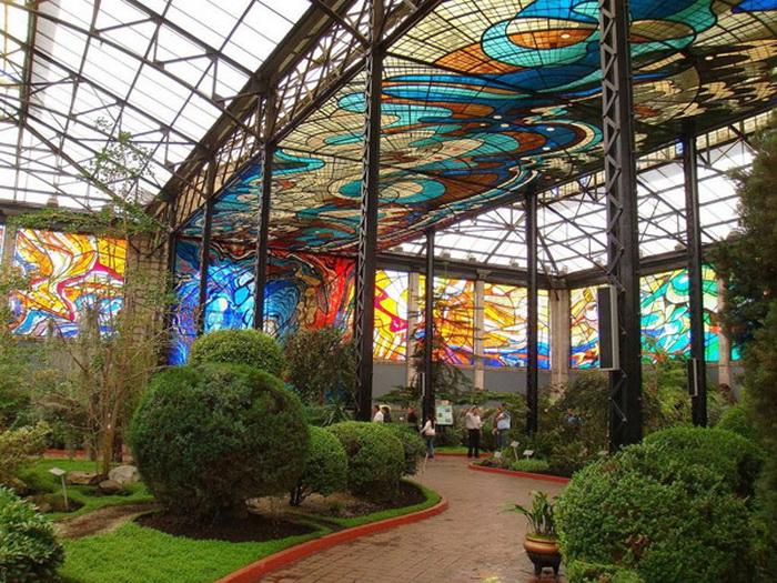 Ботанический сад в Толука-де-Лердо (Мексика)