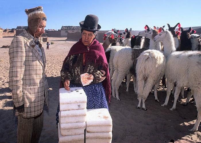 Народный промысел в Боливии: перевозка соли на караванах лам