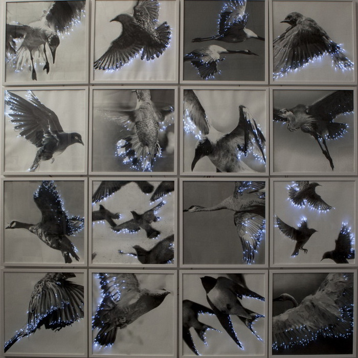 Работы художницы Lyn Godley с использованием оптического волокна