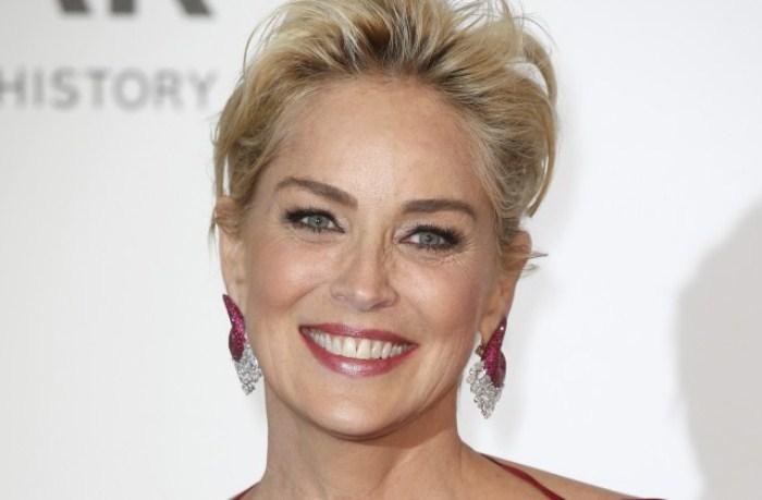 Портрет американской актрисы Шэрон Стоун. Фото: 24smi.org