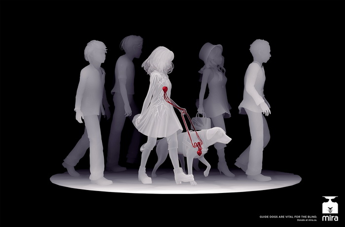 От сердца к сердцу: собаки-поводыри в социальной рекламе компании Mira