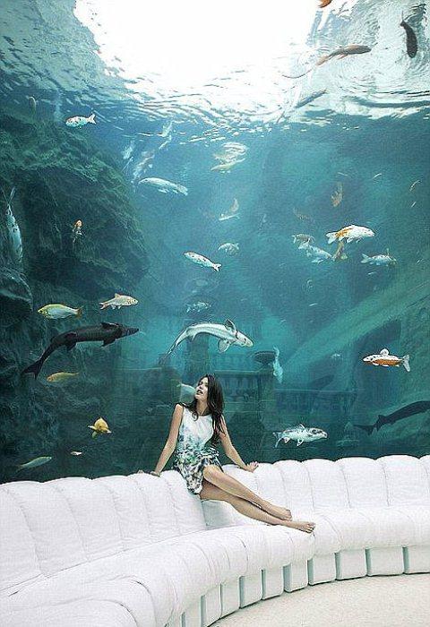 Гигантский аквариум во дворце.